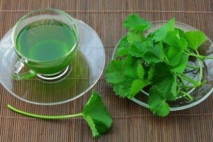 2 cách trị tàn nhang bằng rau má đơn giản, làm mát da